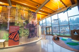 Nature Exploration Station in the Education Center at the Oregon Zoo.