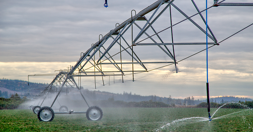 Large wheeled linear pivot irrigation system in a field.
