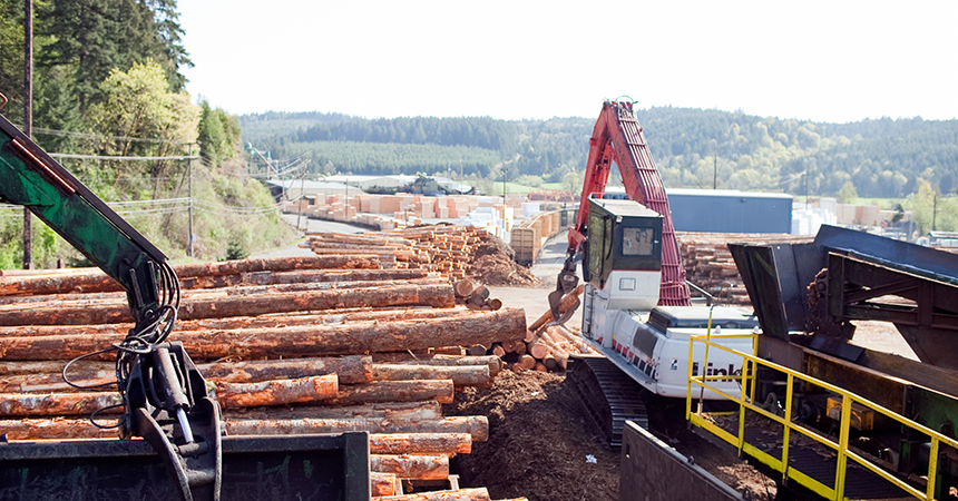 log cranes in a lumberyard
