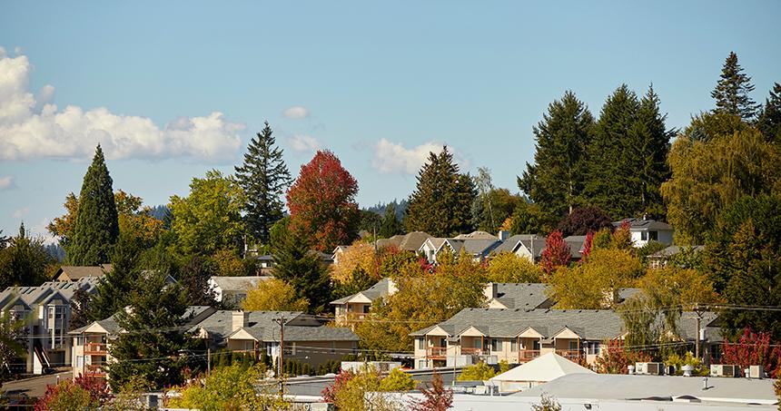 Overhead view of neighborhood