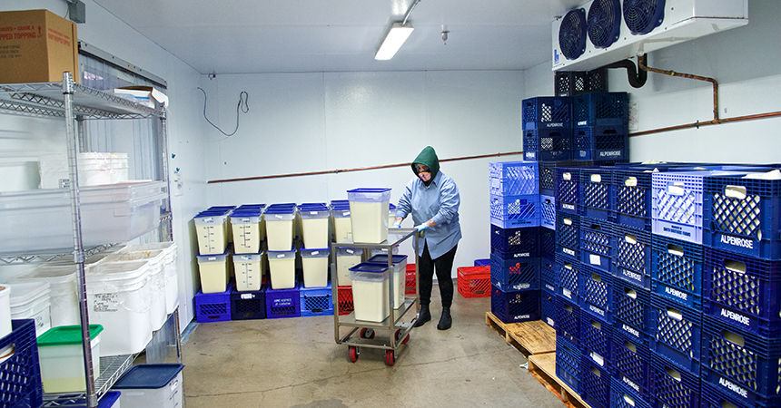 a worker moving dairy around a refrigerated space
