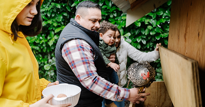 Family at a chicken coop