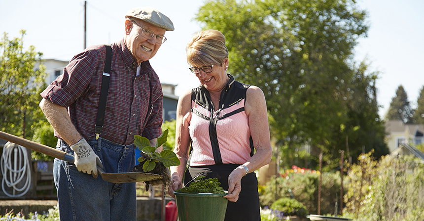 an older man and woman planting things in their garden